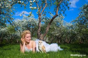 цены свадебного фотографа, услуги и цены свадебного фотографа, Цены свадебного фотографа в Москве
