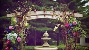 съемка свадьбы стоимость