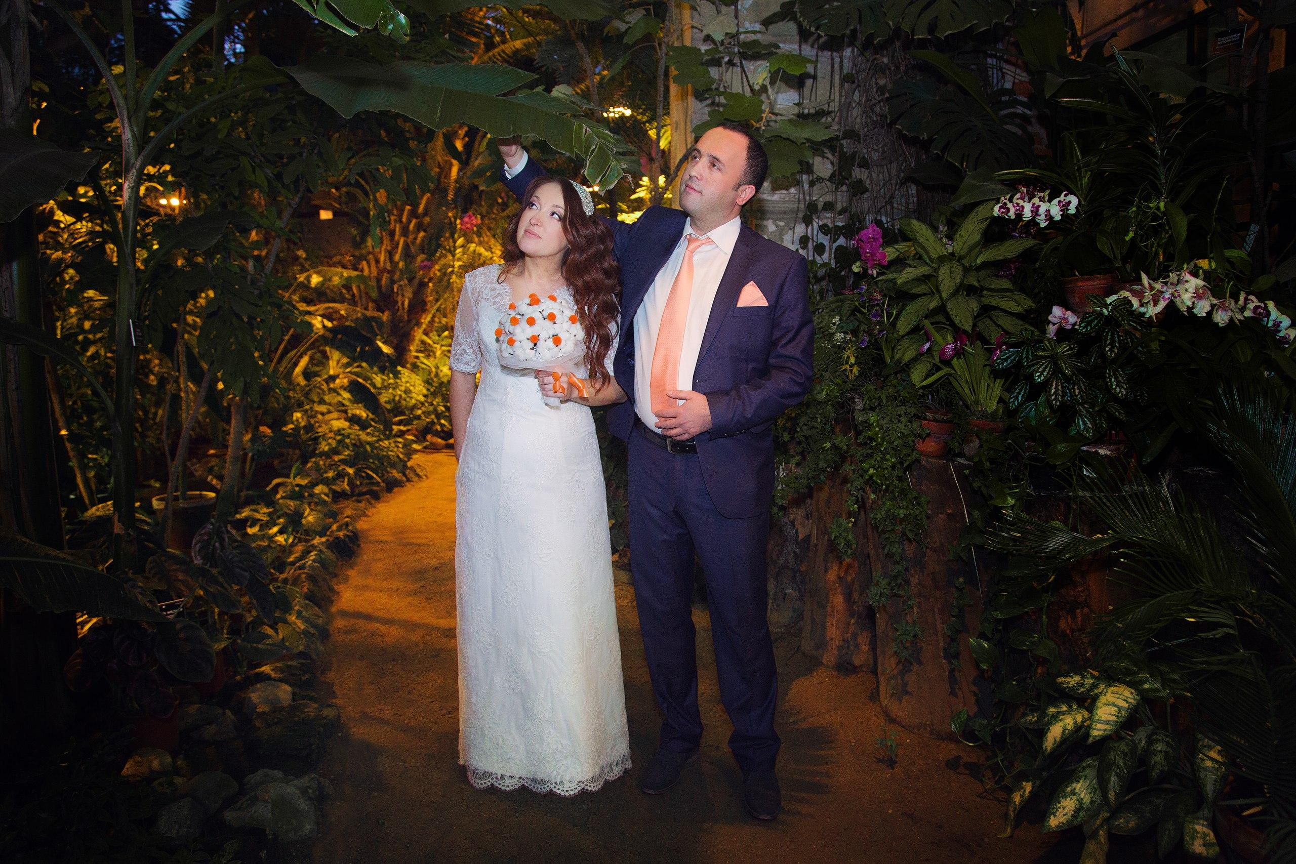 Аптекарский огород фото со свадьбы