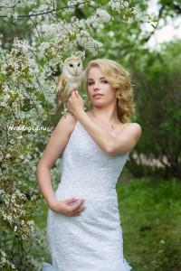 Заказать фотосъемку с совой