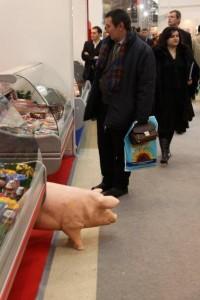 Фотограф на выставку в Москве